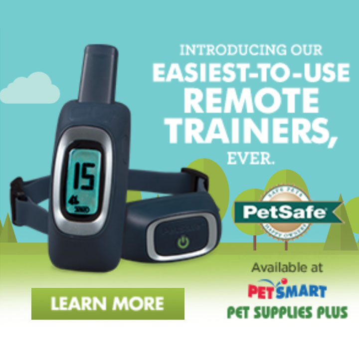 Pet Safe- High Impact